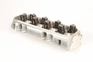 Trick Flow Specialties Cylinder Heads - TFS Cylinder Heads - Big Block Chevy - Trickflow - Trickflow PowerPort Bare Cylinder Head, Big Block Chevy, 365cc Intake