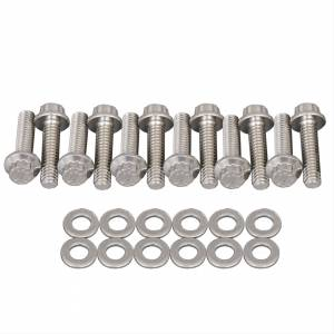 Air Induction - Trick Flow Specialties Intake Manifolds - Trickflow - Trick Flow A460 12-Point Stainless Steel Polished Tunnel Ram Top Intake Manifold Bolt Kit