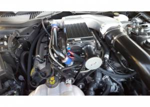 Kenne Bell Superchargers - Ford Mustang 2015-2017 Kenne Bell Superchargers - Kenne Bell Superchargers - Kenne Bell 2015-2017 Ford Mustang 5.0L GT Supercharger - Black Mammoth 2.8LC Liquid Cooled Complete Kit